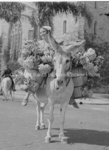 Mujeres Floristas Santa Barbara CA - FS40