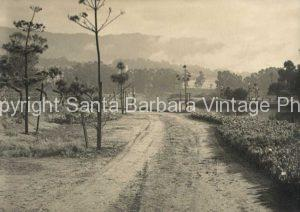 Bird Refuge c1930's Santa Barbara CA. - SB23